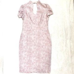 535bd9c2 Alton Gray Dresses - Alton Baker blush pink sparkle sheath dress floral